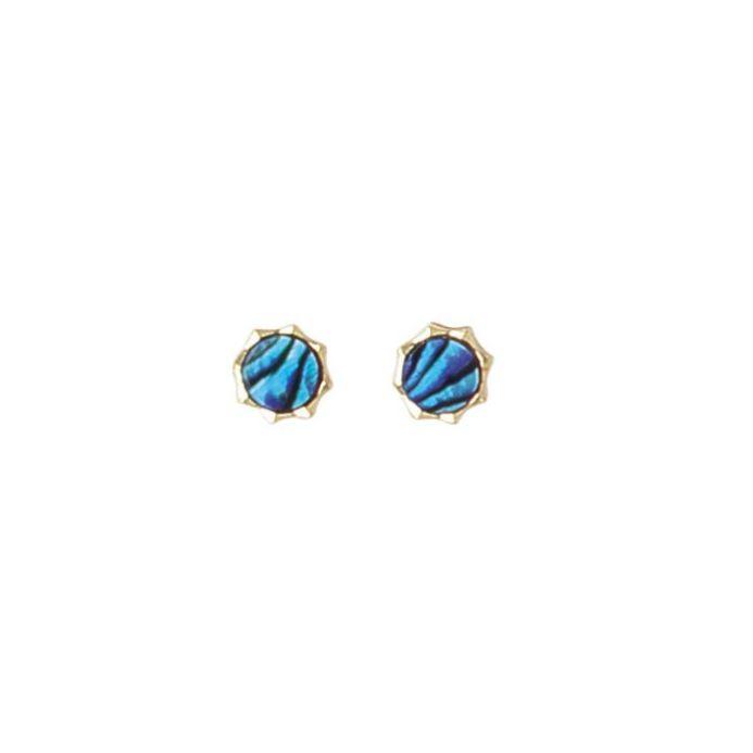 Paua Star Stud Earrings - Ariki New Zealand Jewellery