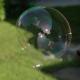 Tin Yang Soap Bubbles